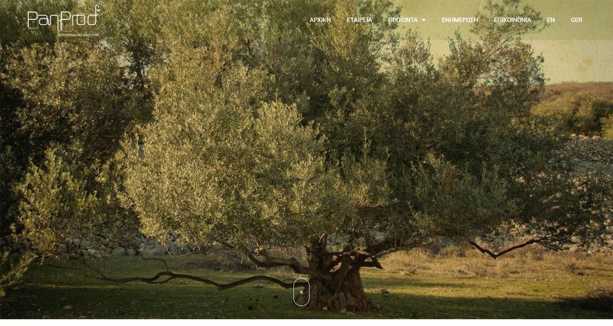 Κατασκευή Ιστοσελίδας   Εξαγωγική Επιχείρηση PanProd